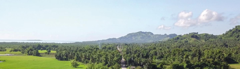 Budayaw landscape